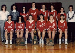 Picture of 1993 Buckeye Central Volleyball Team